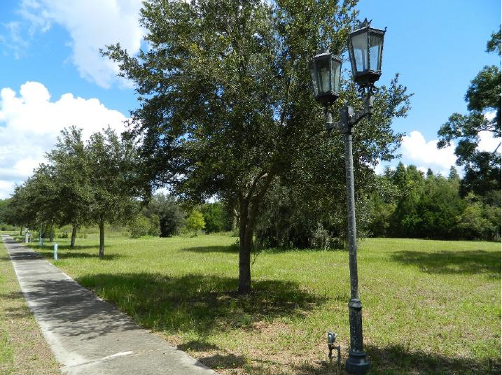 Street_Lamp.PNG