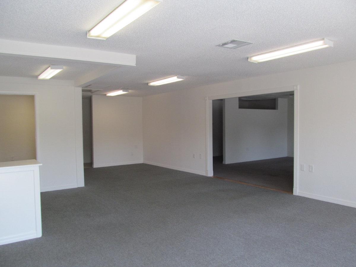 Freshly Painted Interiors