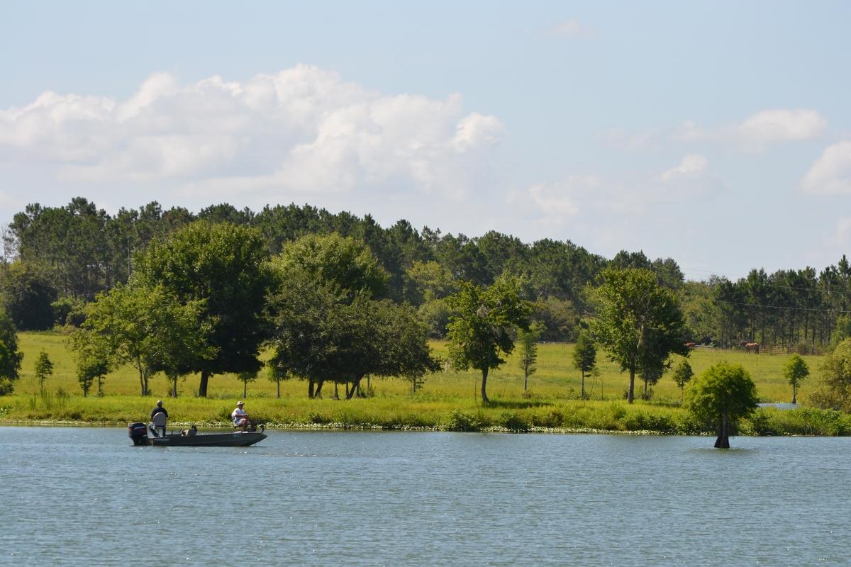 Osprey_Point_Trophy_Bass_Lake_Fishing.jpg