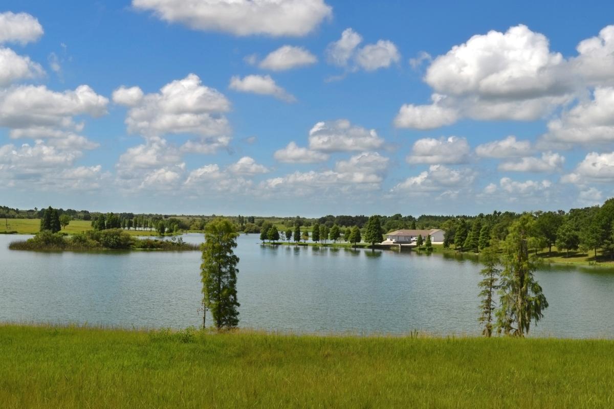 Osprey_Point_Trophy_Bass_Lake_Lake_View.jpg