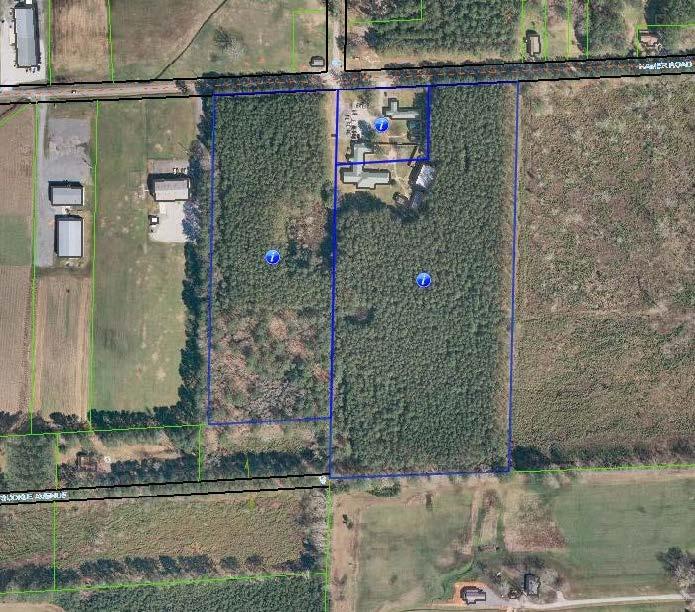 Aerial_318_Hamer_Rd.jpg