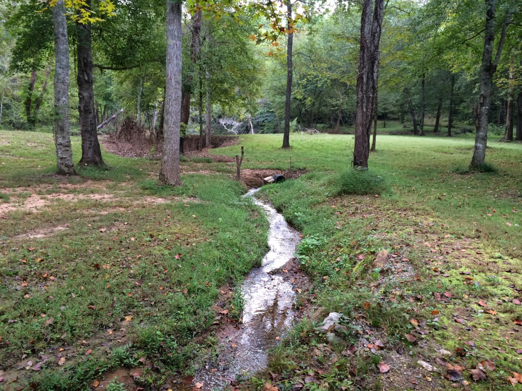 Creek_from_Artisan_well_leading_to_river.jpg