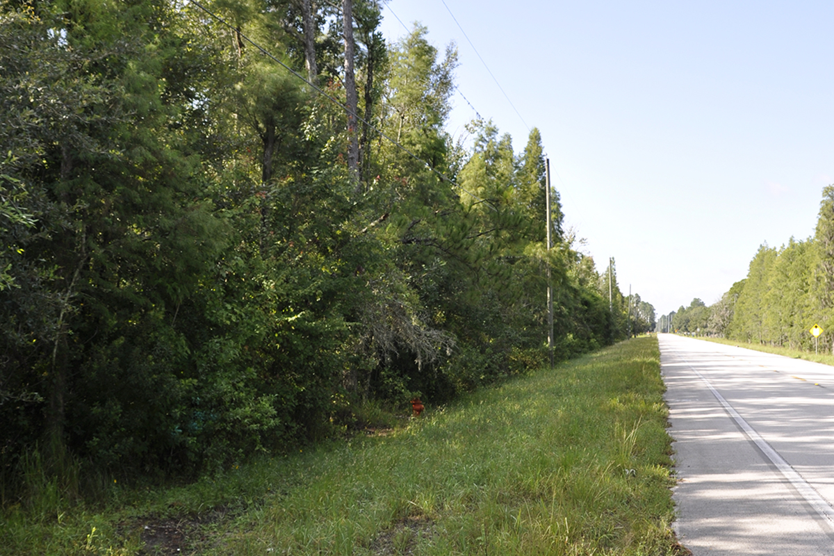 Moore_Road_Homesite_Road.jpg