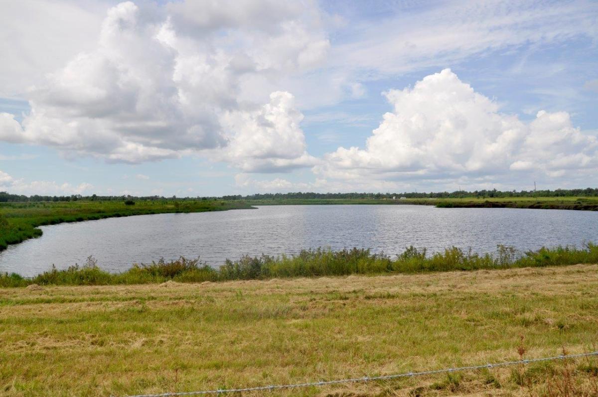09_Sebring_461_Acres_Hunting.jpg