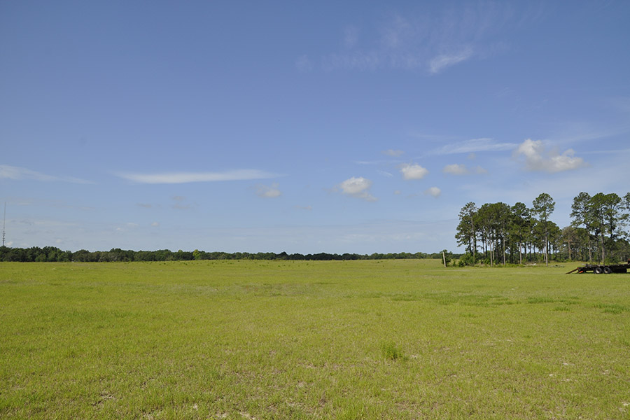 10_Pasco_County_Mixed_Use_332_Cleared_Land.jpg