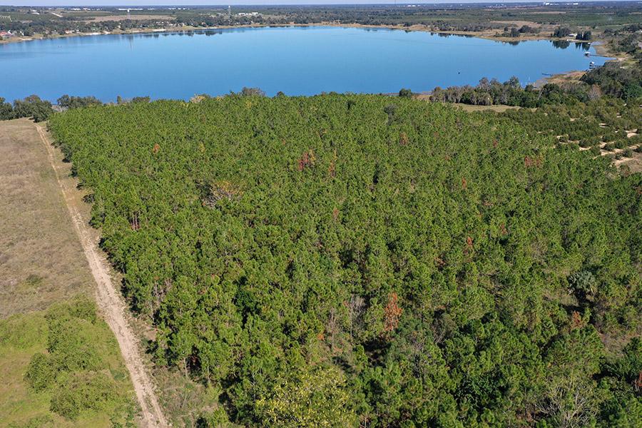 5_Lake_Easy_Vista_Lake_Views.jpg