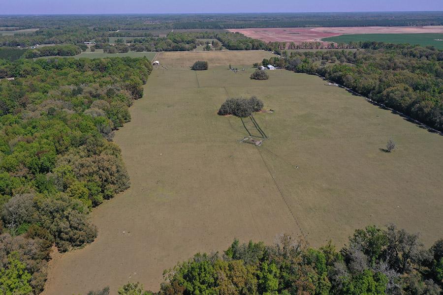2_Suwanee_County_Pastureland_Aerial_Stills_7_.jpg