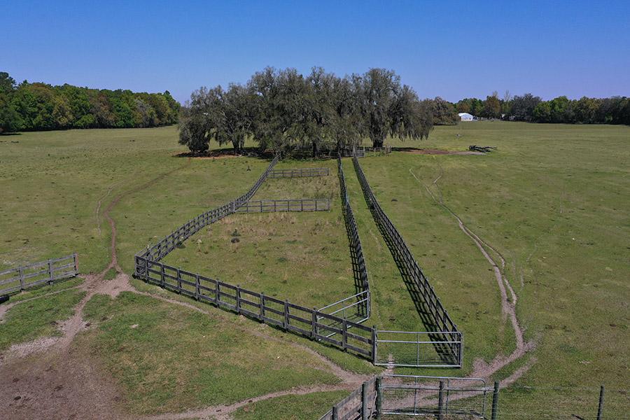 3_Suwanee_County_Pastureland_Aerial_Stills_19_.jpg