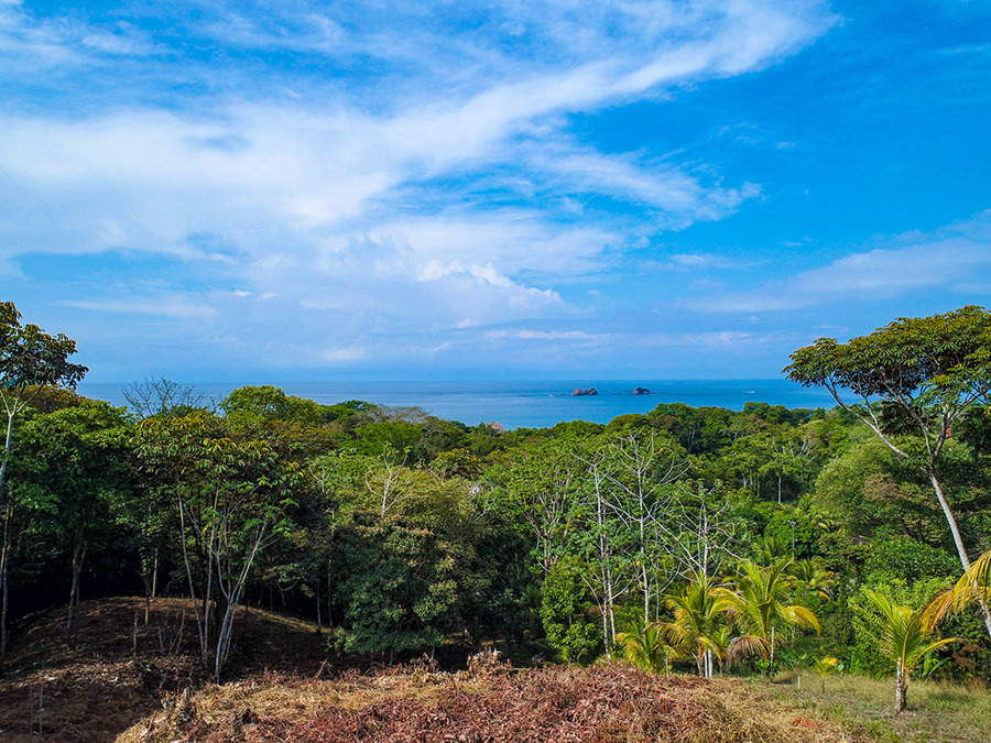 Costa_Rica_Beach_Front_Land_with_Rainforest_Condo_4.jpg