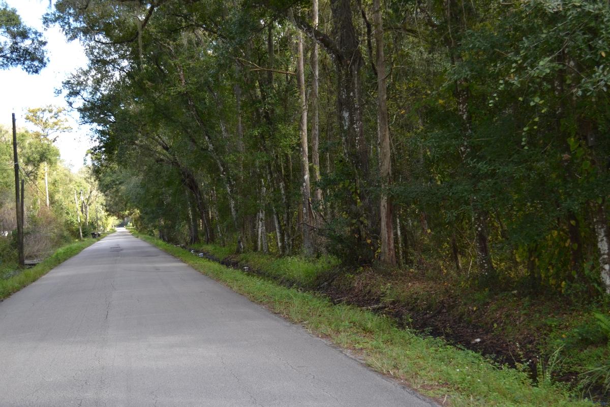Greenbriar_Road_40_Acres_Road_Access_2.jpg
