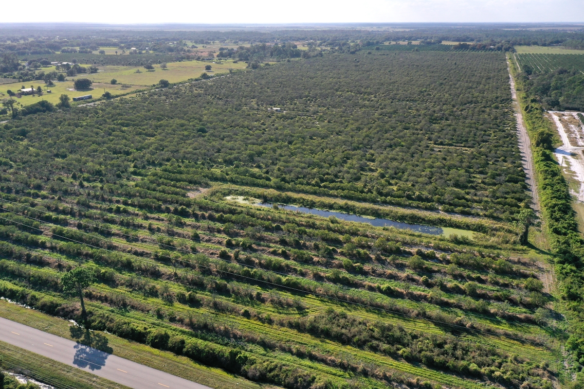 Henscratch_Road_120_Acres_Aerial.jpg