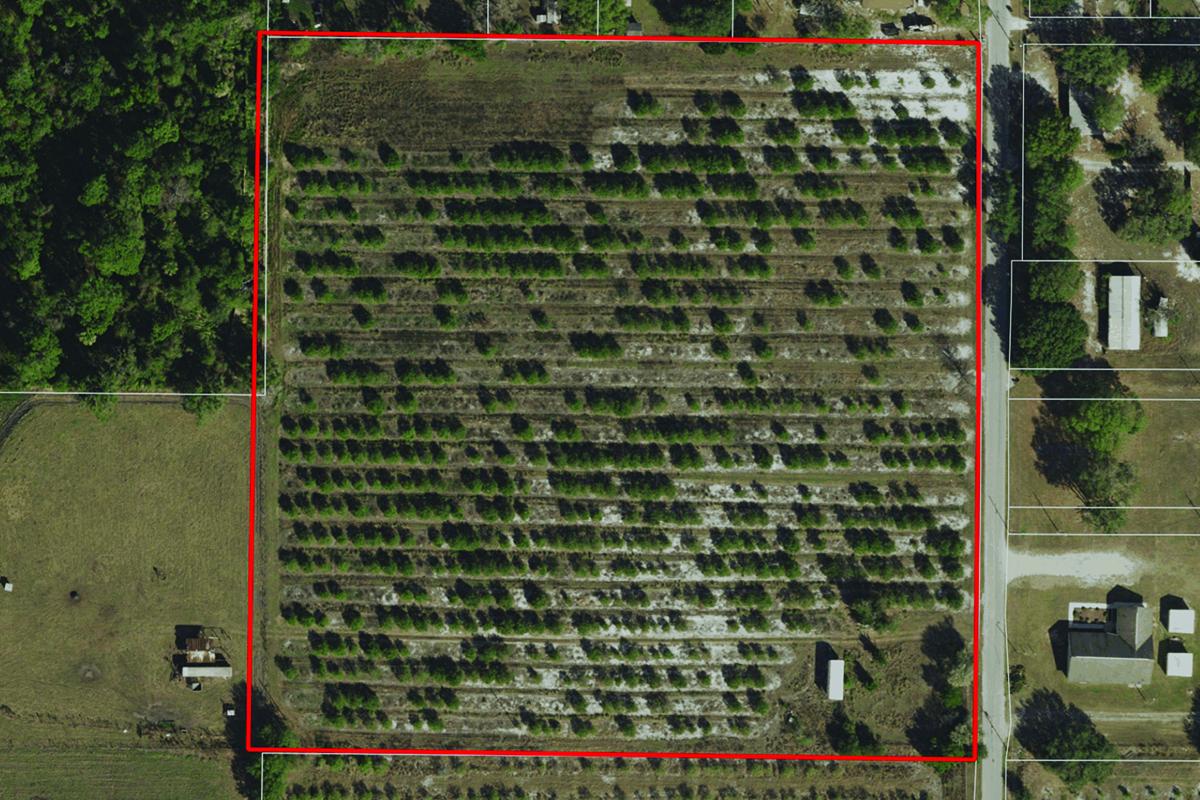 Reynolds_Road_Home_Sites_Aerial_Map.jpg