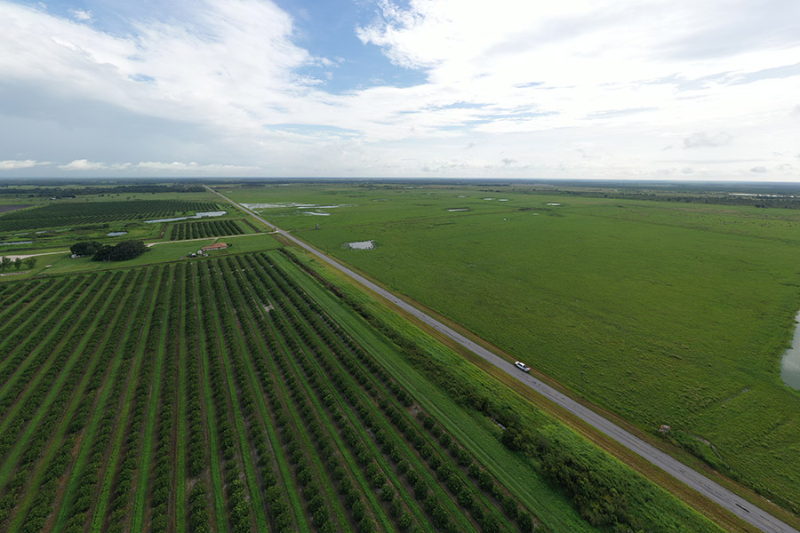 1_Highly_Productive_Pasture_in_Hardee_County_DJI_0370.jpg