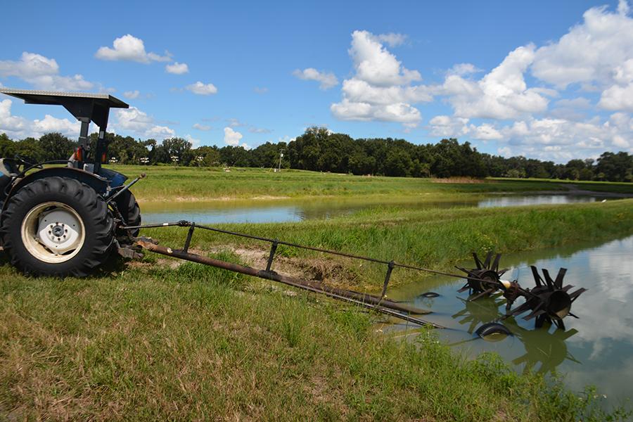 Central_Florida_Fish_Farm_5.jpg