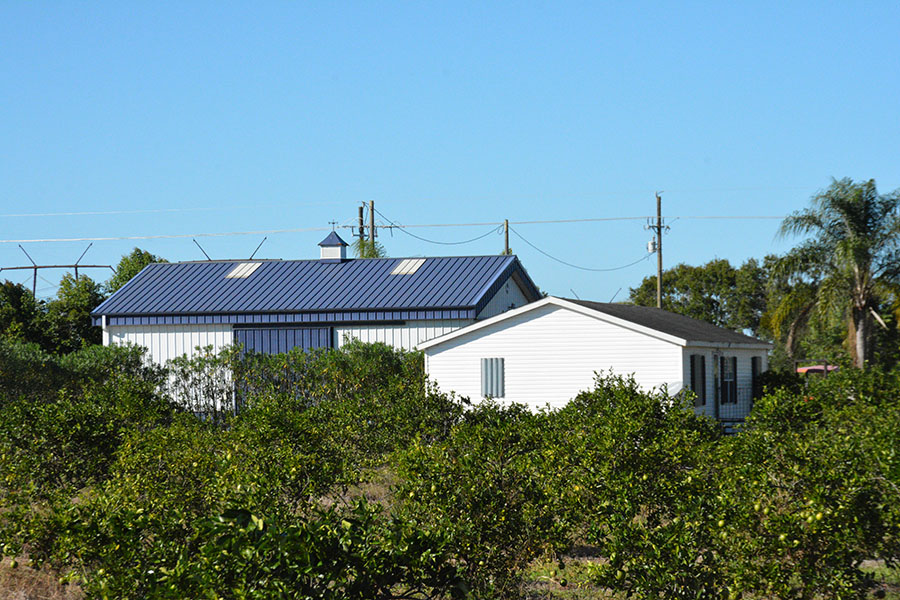 Orange_Avenue_70_Acre_Farm_Large_Barn_Grove.jpg