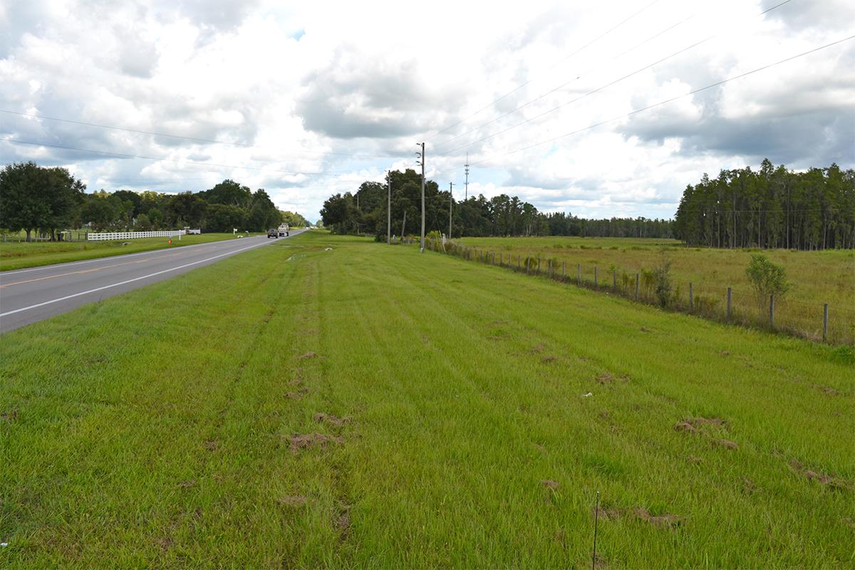 North_Lakeland_Acreage_Road_Frontage_4.jpg