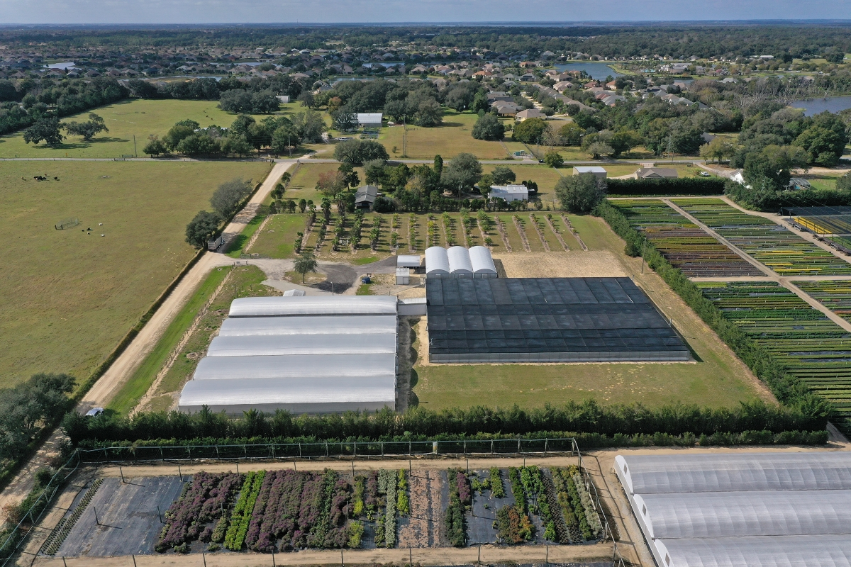 Mt_Dora_Foliage_Nursery_Aerial_Photo_3.jpg